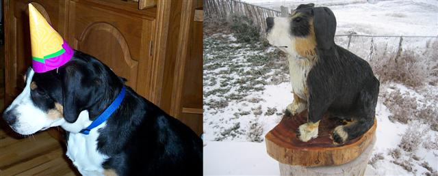 Greater Swiss Mountain Dog chainsaw carving