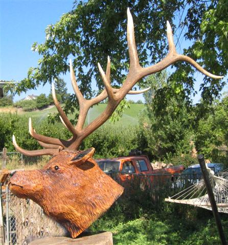 Wood Carved Elk Head Wall Mount with Rack