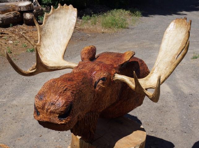 Top Moose Head Wall Mount JC81