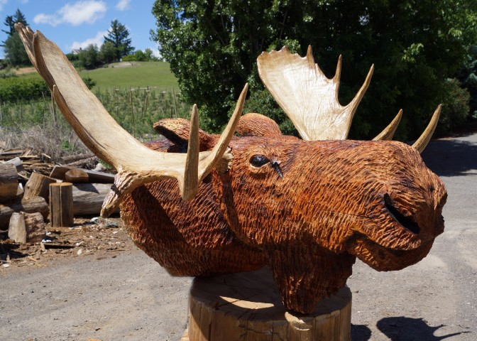 Moose Head Mount chainsaw carving