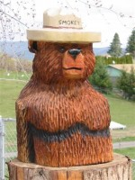 Smokey Bear Head - Product Image