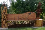 Bear Waterfall and Gliding Eagle Bench - Product Image