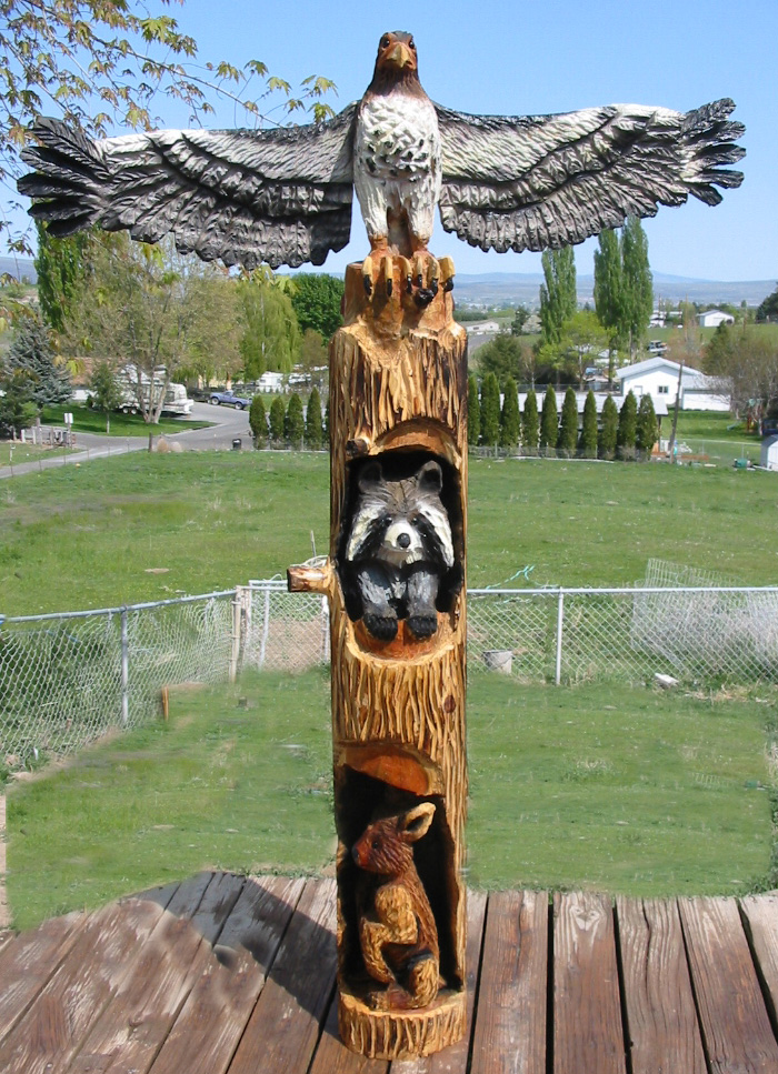 Hawk western pole chain saw carving